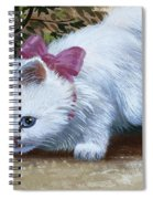 Kitten With Snail And Ball Spiral Notebook