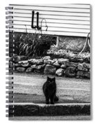 Kitty Across The Street Black And White Spiral Notebook