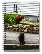 Kitty Across The Street  Spiral Notebook