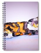 Kitty Cat Spiral Notebook