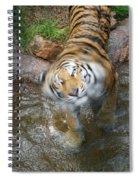 Kitty Got Wet Spiral Notebook