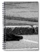 Kitty In The Street Black And White Spiral Notebook