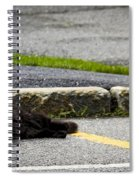 Kitty In The Street Spiral Notebook