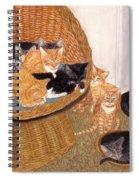 Kitty Litter I Spiral Notebook