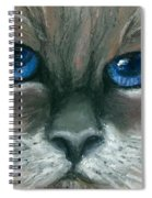 Kitty Starry Eyes Spiral Notebook