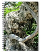 Knarly Man Spiral Notebook