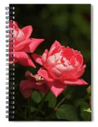 Knockout Roses Spiral Notebook