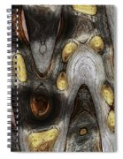 Knot In Old Board Abstract Spiral Notebook