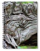 Knotty Tree Spiral Notebook