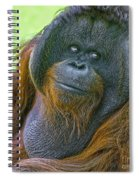 Knowing Smile Spiral Notebook