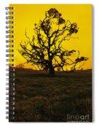 Koa Tree Silhouette Spiral Notebook