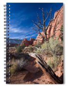 Kodachrome Sunset Spiral Notebook