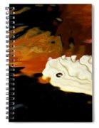 Koi Fin Abstract Spiral Notebook