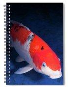 Koi Handpick Pool Spiral Notebook