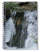 Koi Pond Waterfall Spiral Notebook