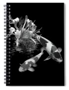 Koi With Honeysuckle Reflections In Black And White Spiral Notebook