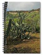 Koko Caldera Spiral Notebook