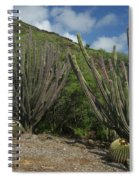 Koko Crater Cacti Spiral Notebook