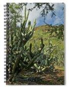 Koko Crater Spiral Notebook