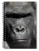 Kong Of The Jungle - Painted Spiral Notebook