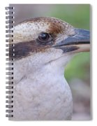 Kookaburra 12 Spiral Notebook