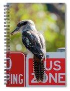 Kookaburra On A Road Sign Spiral Notebook