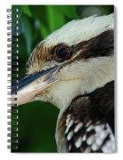 Kookaburra Portrait By Kaye Menner Spiral Notebook