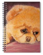 Flying Lamb Productions     Koty The Puppy Spiral Notebook