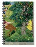 Krishna Fluting The The Milkmaids Spiral Notebook