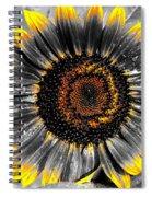 Krypton's Sun Flower Bwy Spiral Notebook