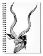 Kudu Spiral Notebook