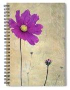 L Elancee - V04t3 Spiral Notebook