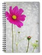 L Elancee Spiral Notebook