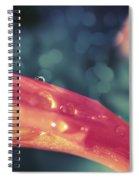 La Goutte D'eau Spiral Notebook