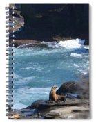 La Jolla Cove Spiral Notebook