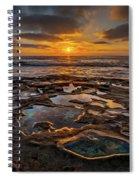 La Jolla Tidepools Spiral Notebook