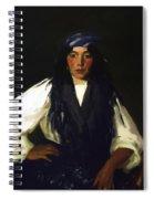 La Mora 1912 Spiral Notebook