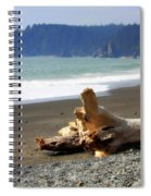 La Push Beach  Spiral Notebook