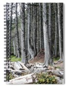 La Push Beach Trees Spiral Notebook