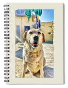 Labrador Spiral Notebook