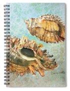 Lace Murex Spiral Notebook