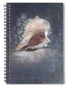 Lace Murex Sea Shell In Blue Spiral Notebook