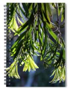 Lacey Leaves Spiral Notebook