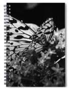 Lacy Black And White Spiral Notebook