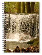 Lacy Waterfall Spiral Notebook