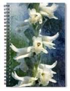 Ladies-tresses Orchid Spiral Notebook