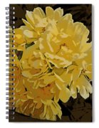 Lady Banks Rose Cluster Spiral Notebook