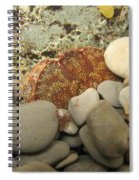 Lady Crab Spiral Notebook
