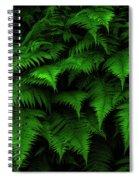 Lady Ferns Spiral Notebook