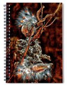Lady Of The Dance II  Spiral Notebook